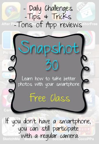 snapshot30