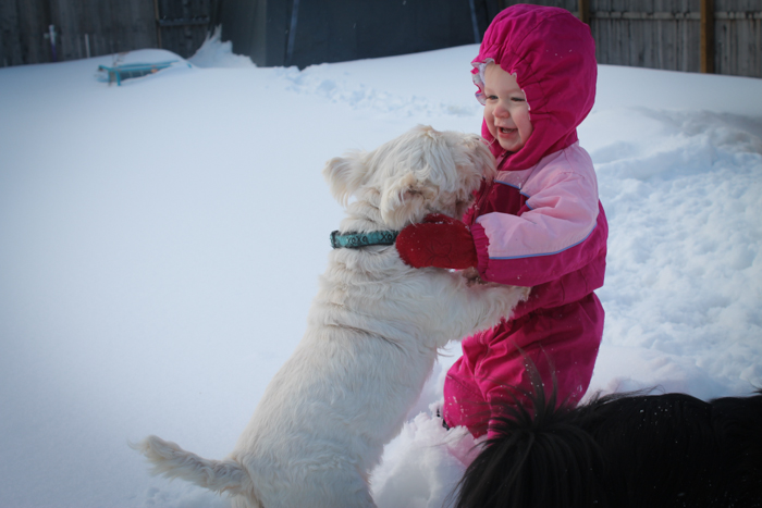 toddler in the snow puppy