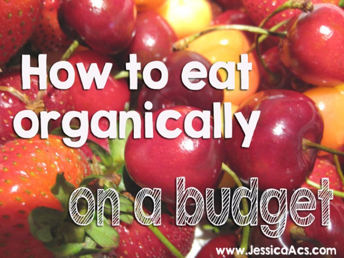 Go Organic! How to Eat Organically on a Budget