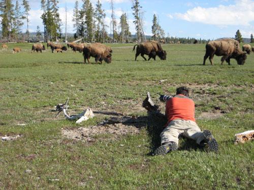 bisonvalley2.jpg